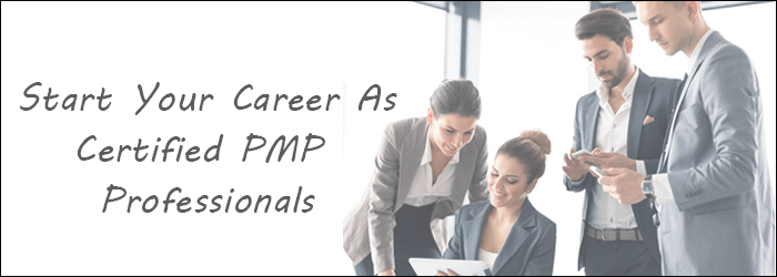 Certified PMP Professional