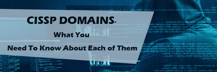 The Domains of CISSP- What You Need To Know About Each of Them